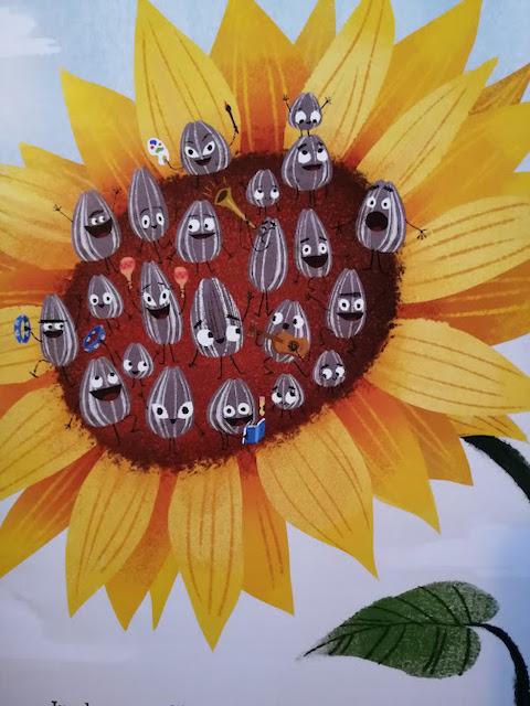 sjemenke na suncokretu