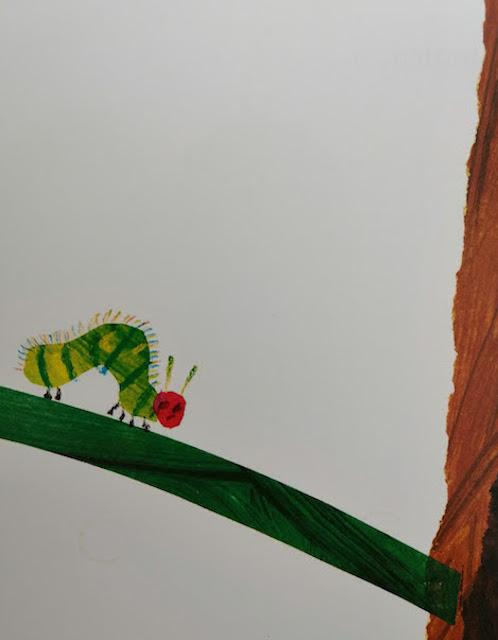 gusjenica na listu