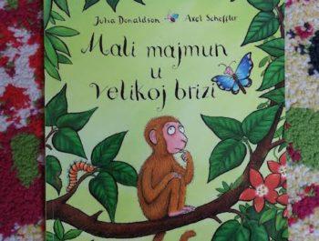 Mali majmun u velikoj brizi